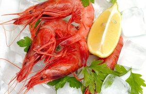 海老 魚介類