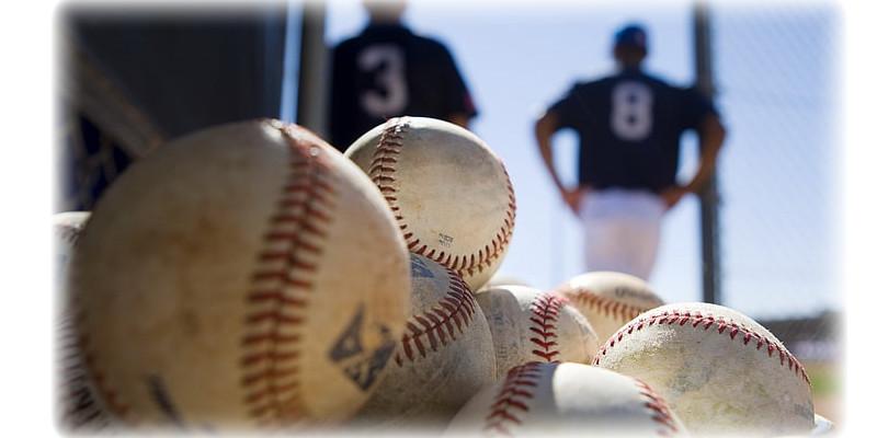 MLB 野球